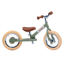 Trybike in Steel 2 Wheels Green